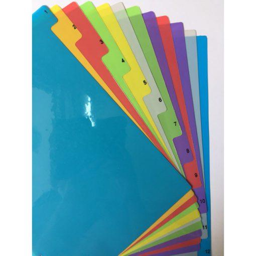 Bìa phân trang nhựa 12 số màu
