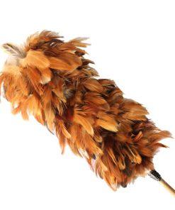 chổi lông gà lớn_2