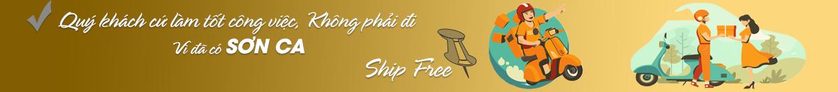 freeship_1